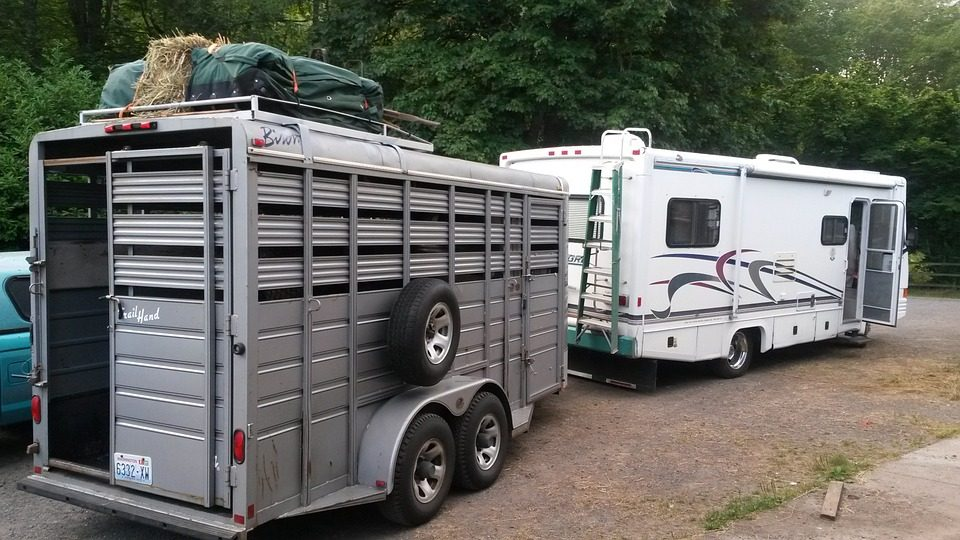 Best Horse Trailers for Long Trips